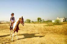 在印度骑马是什么样的体验?