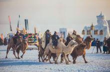 冬季那达慕,属于内蒙的冬日节庆盛宴