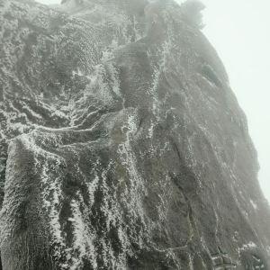 飞来石旅游景点攻略图