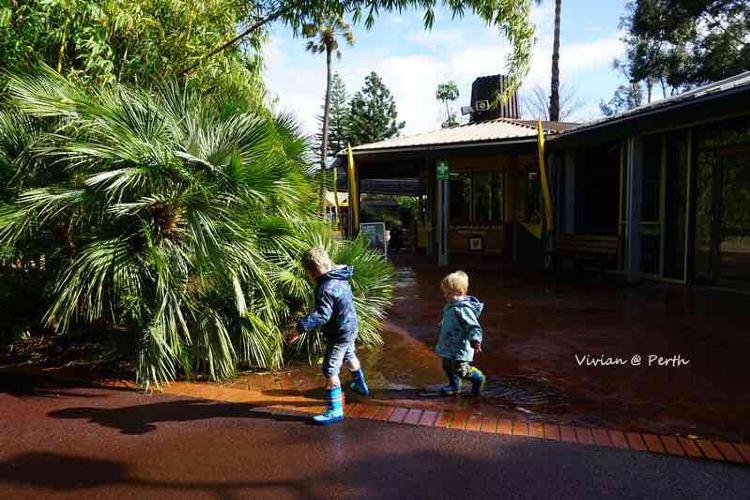 Perth Zoo1
