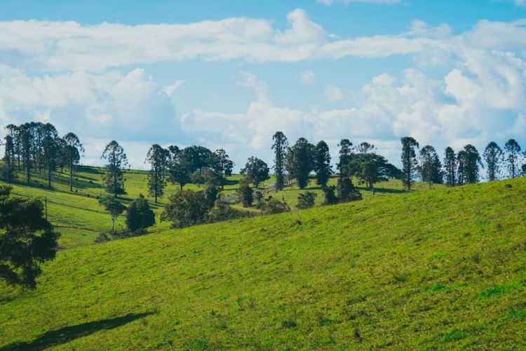 Atherton Tablelands3
