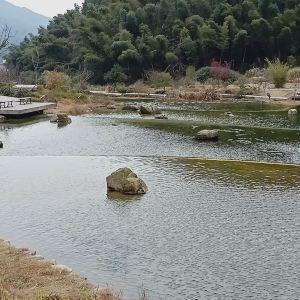 梅岭竹海明珠旅游景点攻略图