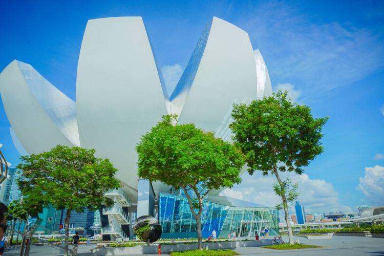 싱가포르 미술관4