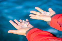 来冰岛的蓝冰湖尝一口万年老冰的滋味