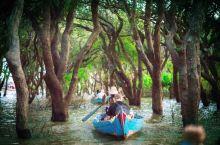 探秘暹粒的小众隐藏景点,坐船深入热带雨林,商户都在水上卖货