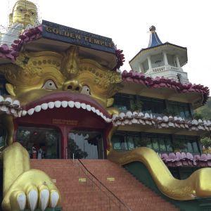 黄金寺旅游景点攻略图