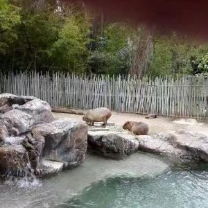 快乐山谷公园和动物园旅游景点攻略图