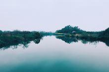 距离杭州40分钟,藏着一处江南最美湿地,栖息着国宝动物朱鹮!