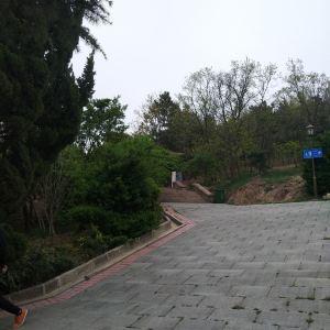 贮水山儿童公园旅游景点攻略图