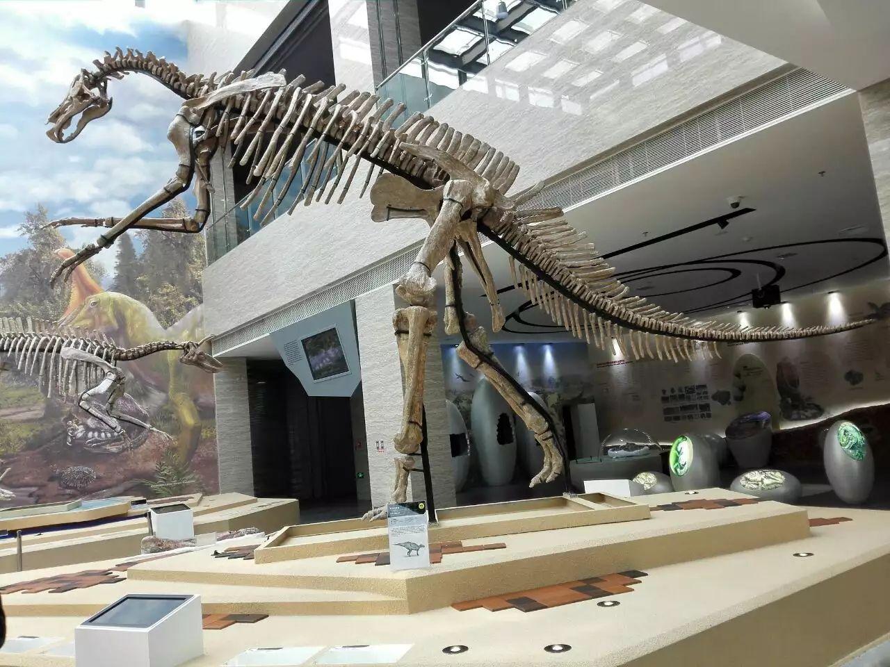 恐龙之乡在哪_莱阳白垩纪国家地质公园攻略,莱阳白垩纪国家地质公园门票/游玩 ...