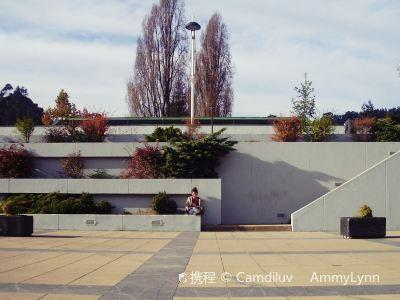 Universidad De Concepcion
