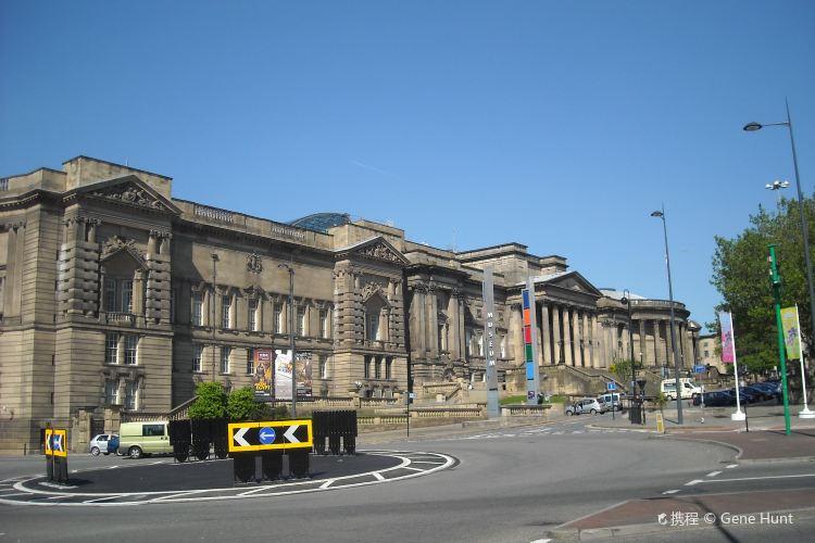 World Museum Liverpool1