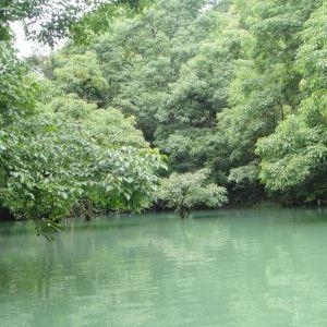 荔波樟江风景名胜区旅游景点攻略图