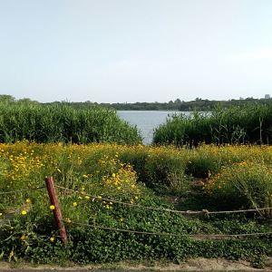 青龙湖旅游景点攻略图
