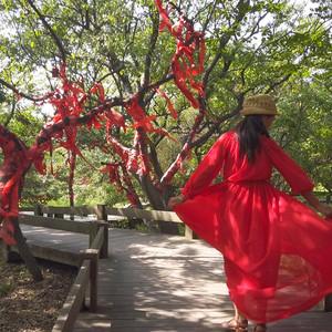 唐山游记图文-周末海岛游两日游,实名推荐曹妃甸,这家水上乐园不简单!