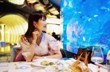 迪拜旅行 | 迪拜卓美亚帆船酒店的梦幻海底餐厅