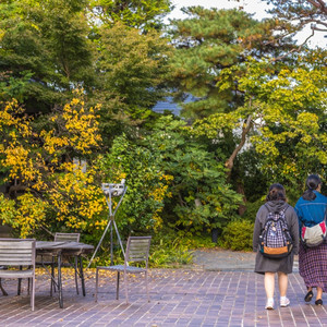 岩手县游记图文-日本并不是只有东京和大阪,这次打卡小众城市岩手,这里是鲜为人知的世外桃园