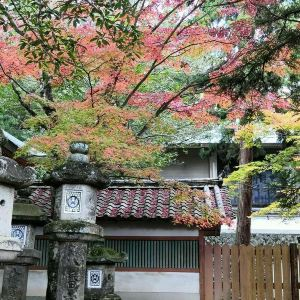 手向山神社旅游景点攻略图