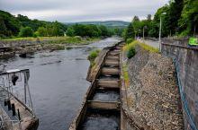 """早餐后,我们前往小镇附近的Pitlochry水力发电厂,观看""""鱼的台阶""""。 话说很久以前这里是三文鱼"""