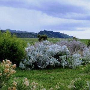 D'Aguilar National Park旅游景点攻略图