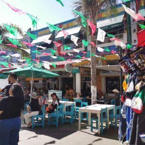 墨西哥城旅游景点攻略图