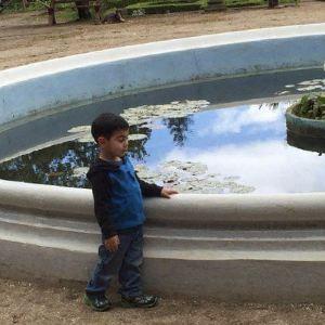 Ruth Asawa美人鱼喷泉旅游景点攻略图