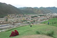 世界藏学府不在拉萨,而是在甘南的这里