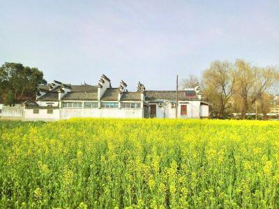 Lvneng Ecological Park