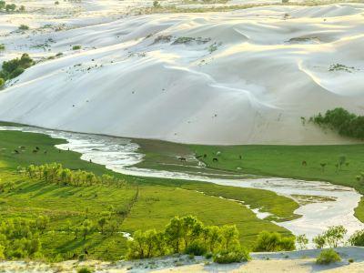 翁牛特旗地質公園