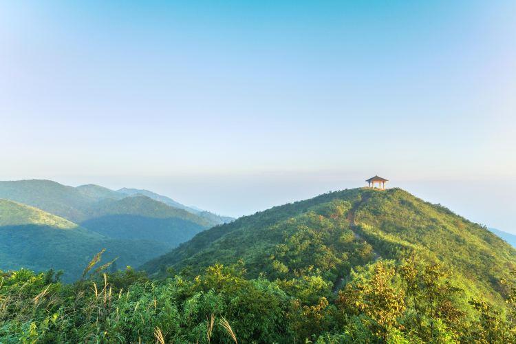 다위산 국립삼림공원