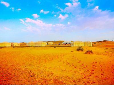 Desert Camel Tours