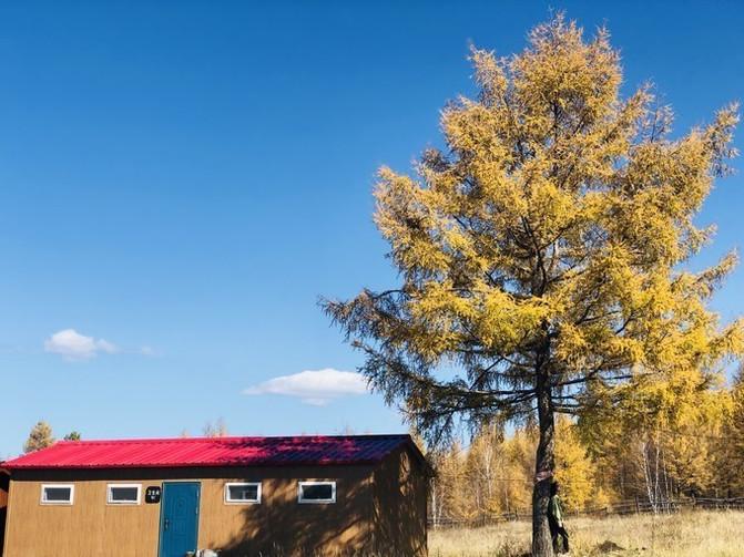 呼伦贝尔大草原 一万个人眼中有一万种呼伦贝尔大草原的秋 – 呼伦贝尔游记攻略插图27