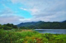 雨中漫步河口湖