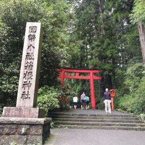 箱根神社旅游景点攻略图
