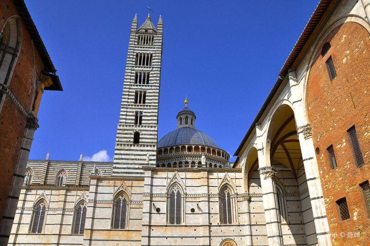 Duomo di Siena4