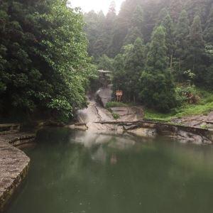 灵芝泉旅游景点攻略图