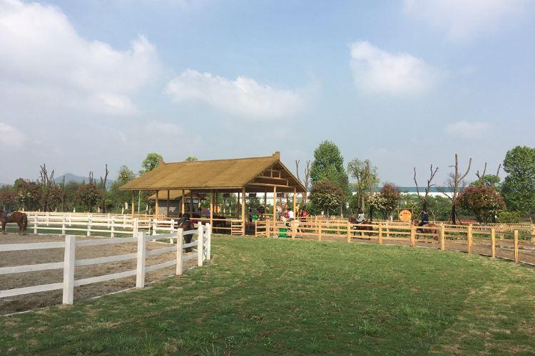 Garden Jialebi Paradise1
