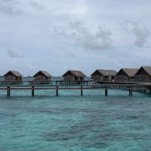 香格里拉岛(香格里拉薇宁姬丽岛)旅游景点攻略图