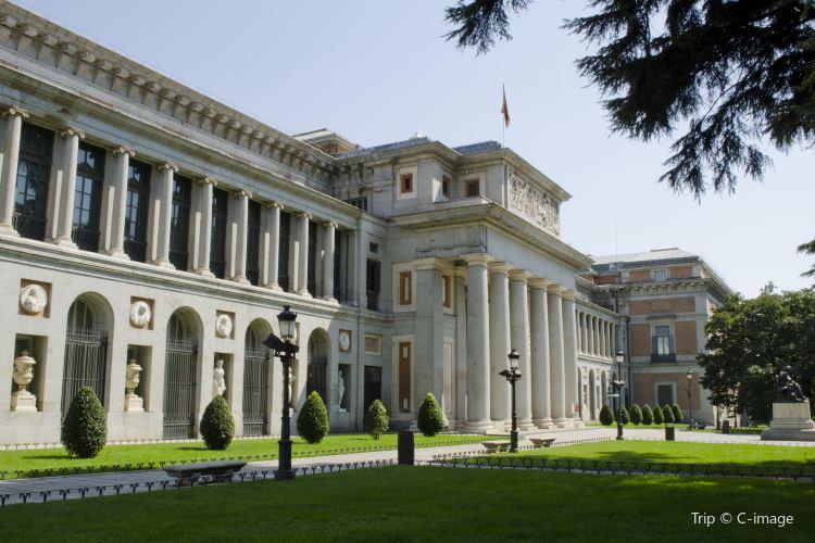 普拉多博物館1