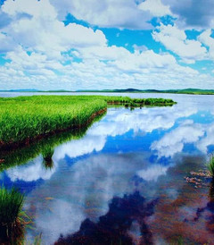 [九寨沟游记图片] 人间仙境之九寨沟黄龙若尔盖大草原,让人流连忘返