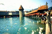 1990年与瑞士相遇(图) 瑞士,这个最美丽和富裕的小国是每个旅行者心目中的必到之地。 27年前首次