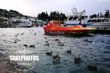 皇后镇瓦卡蒂普湖游船 乘坐游船畅游美景如画的瓦卡蒂普湖,它是一座深而蓝的高山湖,位于市区附近,周围壮