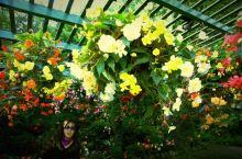 温哥华布查特花园,屋里屋外都是花🌹