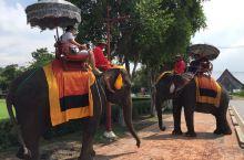 大城骑大象