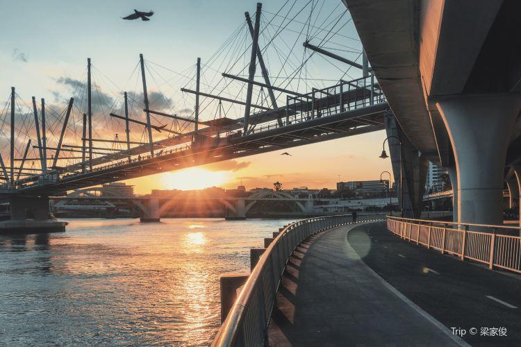 Brisbane River3