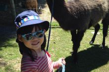 第一次亲密接触 这就是娃喜欢的原因,这个农场住店客人随时可以进去跟动物们亲密接触。城里的孩子接触动物