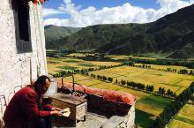 雍布拉康 山脚下的田