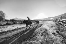 #携程自驾#新疆:鲜衣怒马,彼时少年(克拉玛依、阿勒泰、布尔津、禾木、喀纳斯、白哈