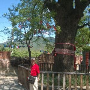 康陵民俗村旅游景点攻略图