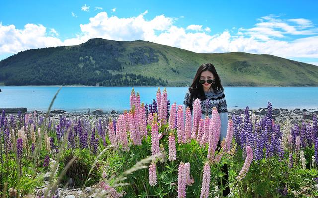 文艺女青年领队老年养生团自驾新西兰南岛